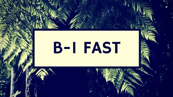 2017 B-1 Fast