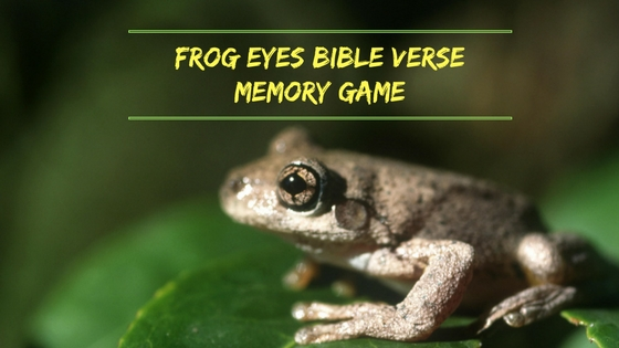 frog eyes bible verse memory game-2