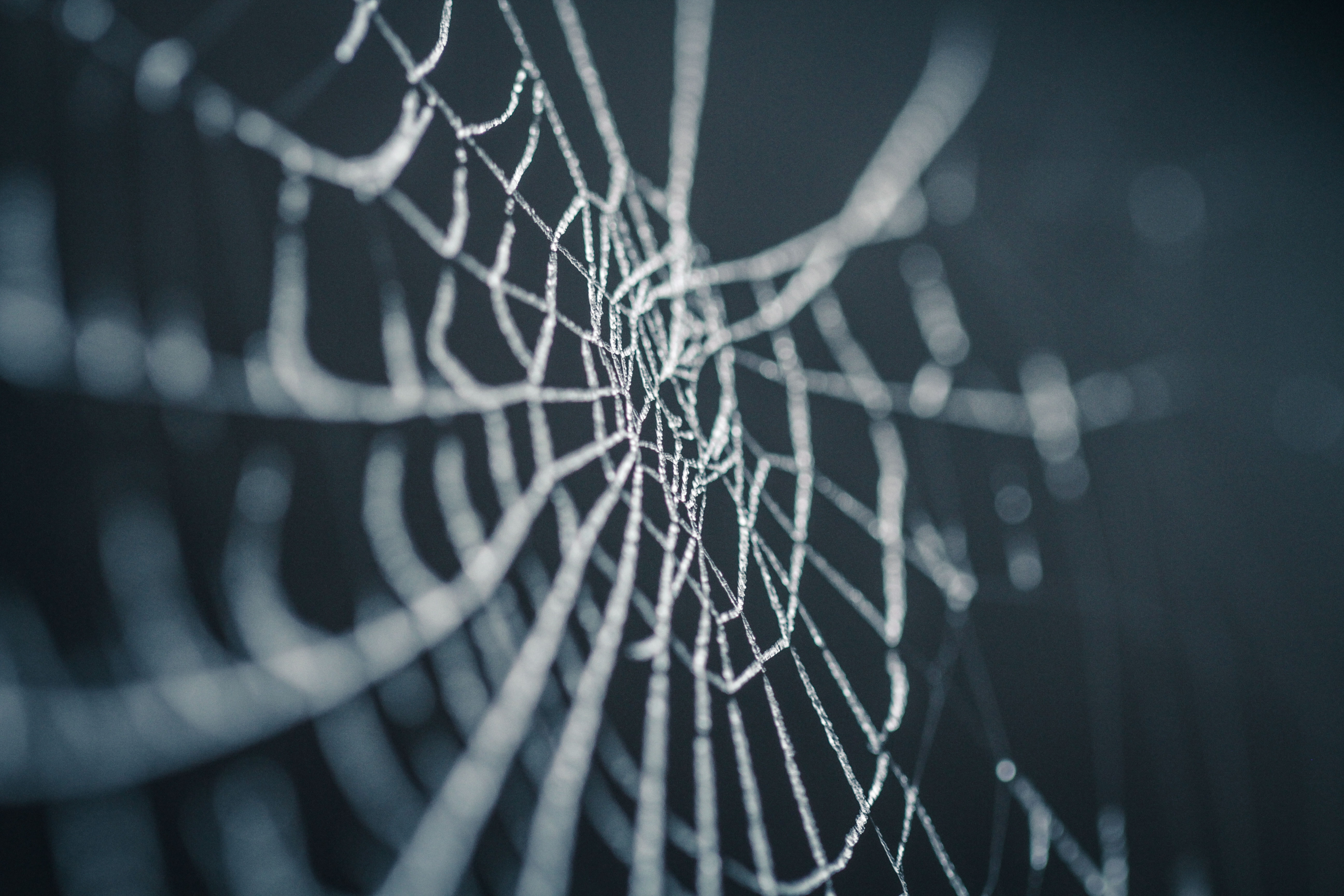 A spiderweb to represent a semon lesson how spiders teach us about God's lessons